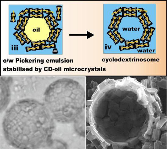 cyclodextrinosomes