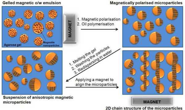 magnetic janus particles