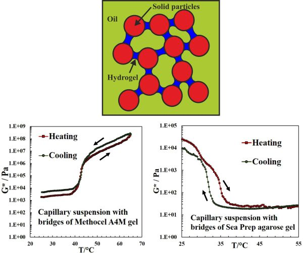 Thermally Responsive Capillary Suspensions