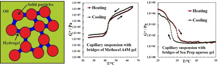 Thermally Responsive Capillary Suspensions2