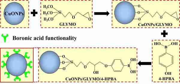 self-grafting CuONPs-Fig1